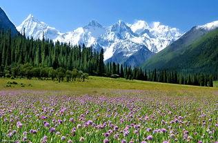 走进天山,探寻天赋神境 雄壮冰川 绮丽草场 高原湖泊 原始森林 召集 约伴