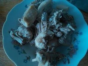 白萝卜鸭肉汤禁忌(鸭肉可以炖白萝卜吗 )
