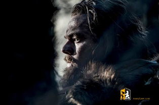 荒野猎人BT种子迅雷下载 苍茫孤绝的生存与复仇