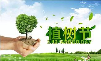 美文 绿色的梦