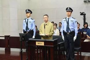 公安部原副部长孟宏伟受审当庭表示认罪悔罪