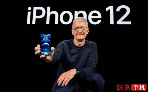 图|手持iphone12的苹果ceo库克
