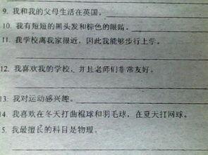 把中文翻译成英文