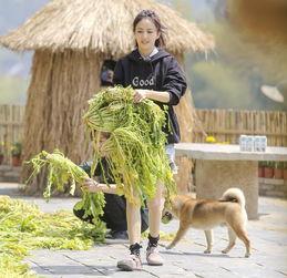 田螺姑娘佟丽娅做客蘑菇屋