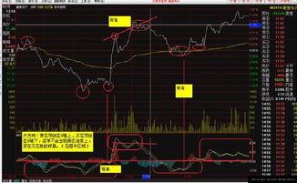 股票周期循環規律?