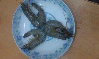 鱼高汤/海鲜高汤的做法步骤图,怎么做好吃