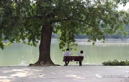 心理测试一棵树一个人一条河