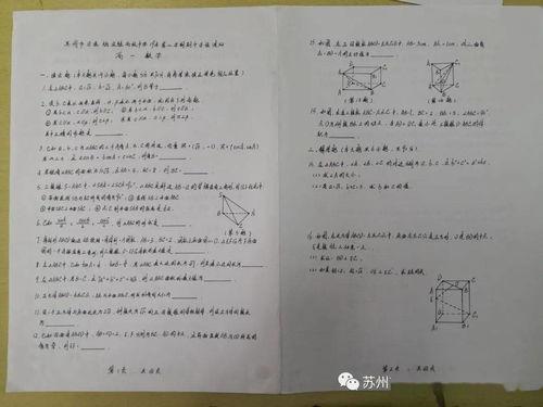 数学社团书面汇报材料