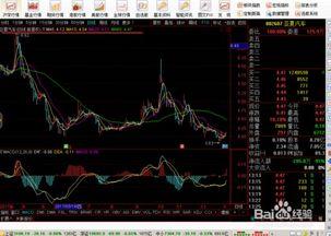 股票交易费用中哪个是双向的?