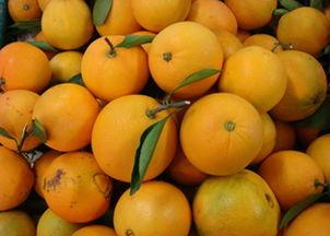 脐橙的功效与作用(4大壮阳水果)