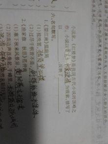 初中文学常识