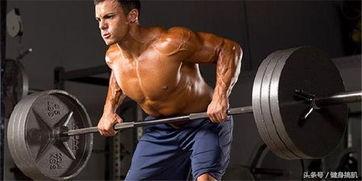 单关节肌肉都有哪些