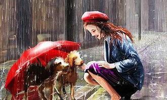 雨中爱作文400字作文