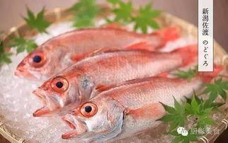 带壳鲜鲍鱼的做法