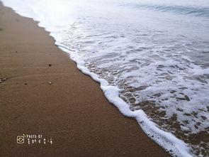 大连自由行看海