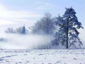 描写冬天四字的词语有哪些词语