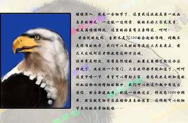 PS鼠绘一只彩色羽毛的鹰