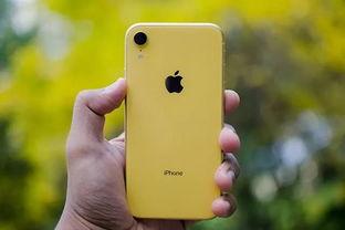 apple/苹果iphonexr$5499