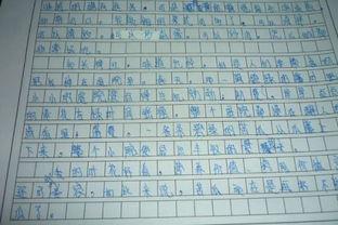 五级上册语文3单元作文范文