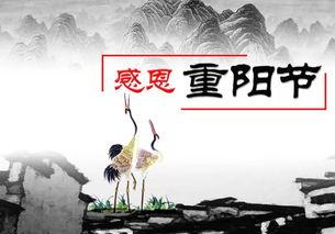 关于重阳节著名的诗句