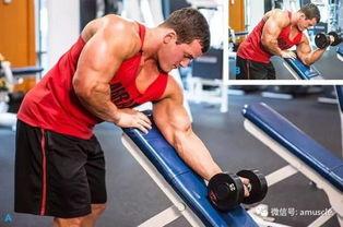 拒绝毫无细节的 粗 怎么练出高质量手臂