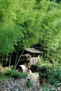 温州著名景点