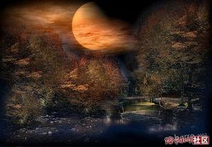 有关秋夜的诗句