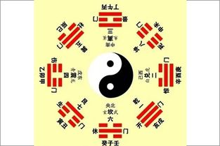 八字命理基础教程(八字入门,新人如何快速学习四柱八字)