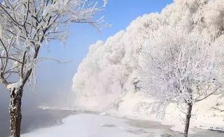 4个描写冬天的古诗句