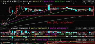 股票600555(九龙山)如何