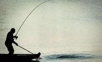 钓鱼的语录
