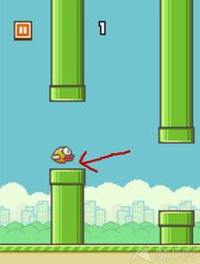 Clappy Bird高分攻略 变态级高分技巧大全