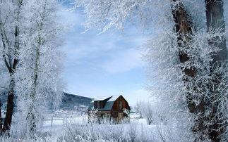 大雪纷飞白雪皑皑的图片大全