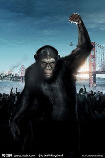 3D人猿星球之猿族崛起高清无字海报图片