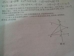 """""""平面直角坐标系""""的12个知识点和练习题(附答案)"""
