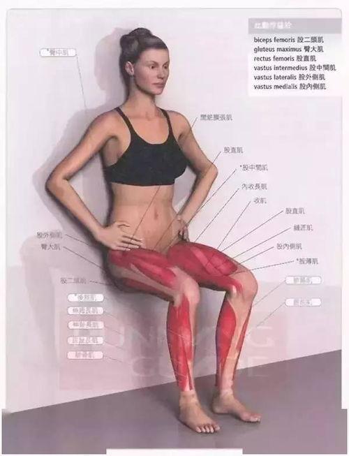 靠墙静蹲预防膝盖损伤