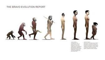 人类未来进化十万年后