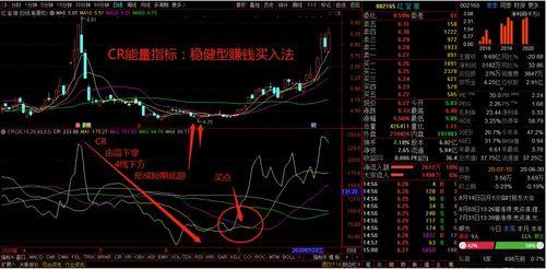 稳健型股票有哪些.,,,现在买哪些稳健型股票好 年前卖