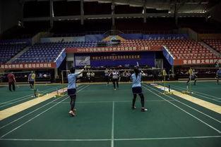 2018山东都有哪些大学招羽毛球 成人高考