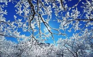 雪中诗与诗中雪