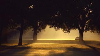 唯美孤独伤感桌面壁纸高清大图预览1920x1080 风景壁纸下载