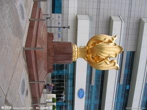 香港金紫荆图片
