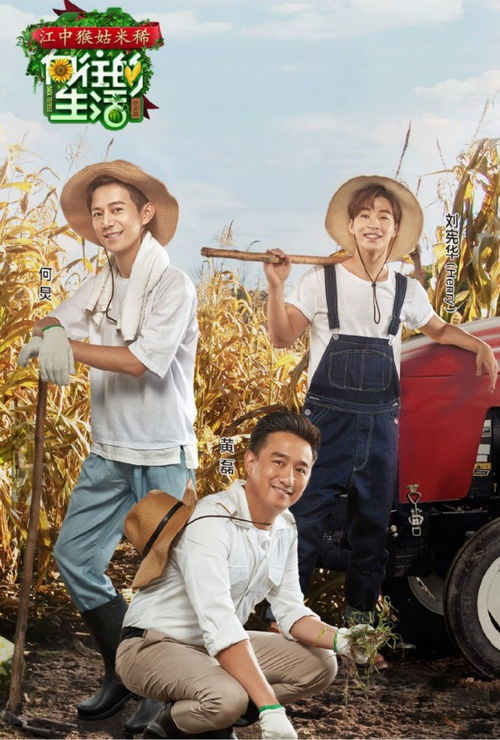 向往的生活BGM曲谱大放送农夫渔夫弹唱教学