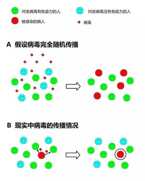 群体免疫的效应原理(绘图:商周)