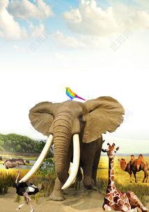 大象长颈鹿绿色森林动物世界动物园海报保护动物海报背景展板免费下载觅知网