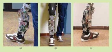 机械是身体的延伸 新型假肢和矫正器械的科技进展