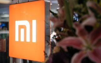 【钛媒体综合】9月9日消息,小米5g手机即将于今日上市,型号名称为mi9s,即小米9s.