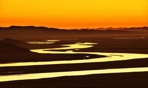 有关黄河水的诗词名句