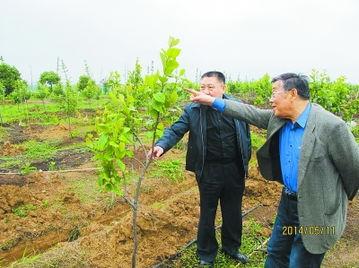 农业科学家赵亚夫﹕在泥土中﹐叩问生命的意义