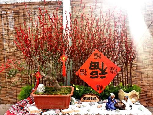 关于春节游园的诗句